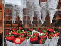 まだ 春のヨーロッパを楽しもう! 6.ブリュッセルで「美味しい」を連呼する