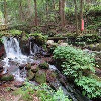 1日で5府県の旅でプチオフ会☆後編☆松尾寺と瓜割の滝で、マイナスイオンを浴びる(*^_^*)