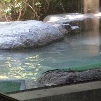 仙石原の温泉に入り昼食後帰宅