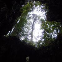 縄文杉コースのトレッキング
