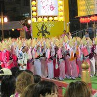 2014 日本の夏・徳島阿波踊り 初日(&鳴門)