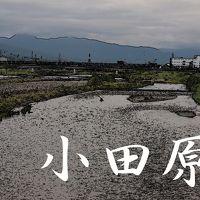 「東海道五拾三次」を歩く  十、小田原 〜 箱根