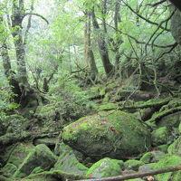 [鹿児島・屋久島]縄文杉に会いたい旅�