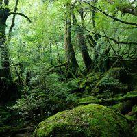 世界遺産の島 屋久島トレッキングの旅 3日目&最終日