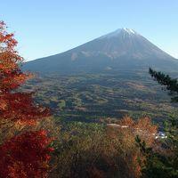 富士五湖のそばにある紅葉台は、富士山が目の前に対峙するベストスポット