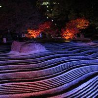 博多千年煌夜 ライトアップウォーク2014  承天寺