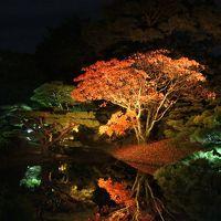 2014香川県へ うどん・紅葉・丸亀城・こんぴらさん