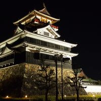 ANAで行く♪名古屋フリープランツアー