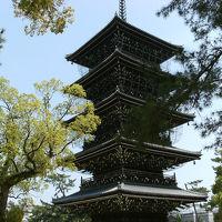 (思い出日記) 2012年04月08日〜12日間 四国一週とお遍路 「11日目」