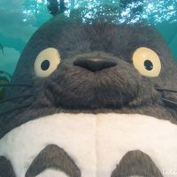 ほっこりする三鷹の森ジブリ美術館へ行ってみた