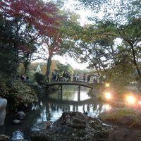 紅葉の六義園をメインに江戸博物館を併せて。都営地下鉄秋のワンデーパスで巡る東京都心の週末。