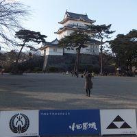 小田原城周辺探索