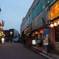 ヒルトン成田に前泊するついでに、成田山観光と、「さくらの山」で飛行機鑑賞、成田駅周辺の居酒屋と立ち飲みで飲んできました