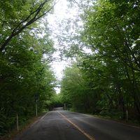 ふらーり新緑の宮城県ドライブ旅