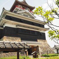 東海名城巡り� 〜 尾張平野の一望と清州城 〜