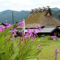 心に染みる日本の風景を訪ねて♪初ドライブは茅葺屋根が残る町、美山町