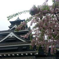 いつもの1泊2日強行軍旅行。熊本と高千穂へ。1日目は熊本と阿蘇。