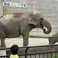 四国動物園巡礼?の旅《8/9》 岡崎市動物総合センター・Animoと帰り道
