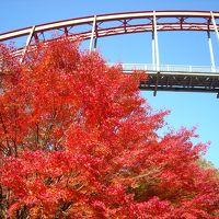 紅葉の帝釈峡