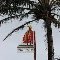 ハワイ島� 北のポロル渓谷へドライブ〜