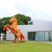 2015 AUG 真夏の青森紀行(8/8) 十和田市現代美術館 本当に良かった 規模は大きくはないけど最高の現美!