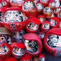 4日目 達磨寺から八ヶ岳縦断して武田神社と駿府城まつり 377km