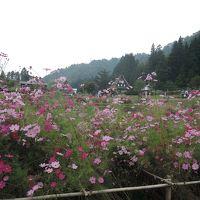 北陸新幹線で富山2015