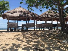 セブ島へ アラフォー女2人 4泊5日の旅
