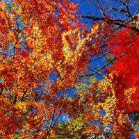 西沢渓谷の紅葉ハイキング