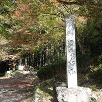 鳳来寺山に紅葉狩りに来たのですが,ちょっとまだ,はやすぎたようでした。