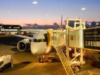 AA 成田→シカゴ B787-8 新型ビジネスクラス 搭乗記