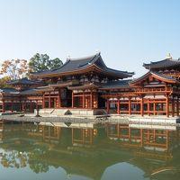 回顧録 2014年11月後半3連休 滋賀京都の旅(4) 宇治平等院と萬福寺