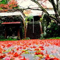 京都・亀岡紅葉巡り〜神蔵寺・穴太寺・鍬山神社