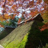 佐賀県基山町 秋が深まる大興善寺へウォーキング(2015年11月)