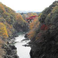 東武特急で行く、紅葉のわたらせ渓谷