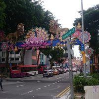 2015年度 アジア周遊の旅(シンガポール1日目 ナマコクリームを求めて)
