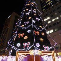 ドイツ・クリスマスマーケット大阪&北欧クリスマスマーケット に行って来ました