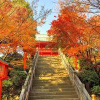 流鏑馬で有名な早稲田にある穴八幡宮の紅葉