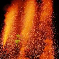 三河-4 【三河伝統手筒花火】 C 豪快!三本立 ☆火の粉を浴びながら放揚
