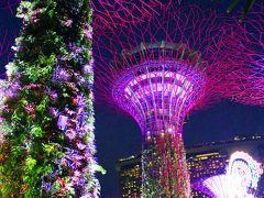 SG50+SW+X'masなシンガポールの旅(後編)