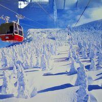 蔵王の樹氷と冬の山寺散策