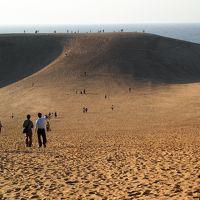 初めての鳥取&島根の旅【3】一日目・白兎神社・鳥取砂丘の砂は膝に優しい