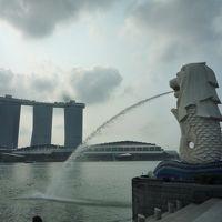 シンガポールで世界を旅しよう 1日目 〜 マーライオンに会いにいく 〜