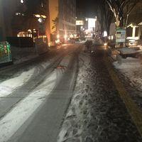 雪の秋田出張