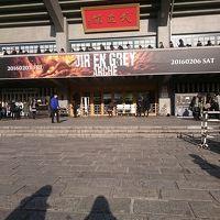 DIRENGREY日本武道館