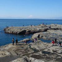 江ノ島の稚児ヶ淵で遊ぶ。開放的な岩場海岸です。富士山が正面に見えるいいところです。