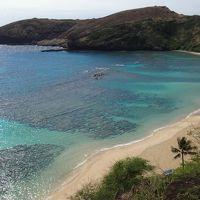 16年春節〜オアフ島の旅◎03 ハナウマ・ベイ、サンディ・ビーチパークとマカプウ岬