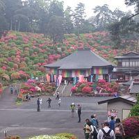 駅からハイキング「春の青梅 霞丘陵「華回廊」ハイキングコース」