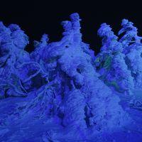 蔵王樹氷観光