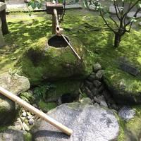 博多散策(ANAシステムトラブル付)